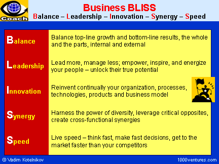 Business BLISS: Balance, Leadership, Innovation, Synergy, Speed