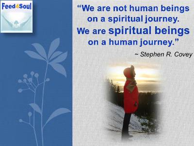 Selfdiscovery quotes: We are not human beings on a spiritual journey. We are spiritual beings on a human journey. - Stephen Covey