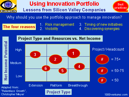 INNOVATION STRATEGY - Best Practices of Silicon Valley Firms: Using Innovation Portfolio
